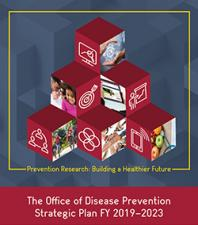 ODP Strategic Plan Design FINAL COVER resized.jpg